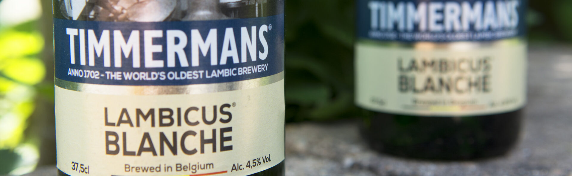 Lambicus Blanche, brouwerij Timmermans