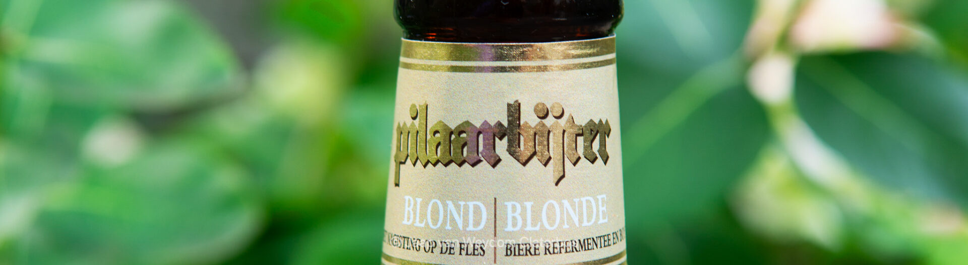 Pilaarbijter - Brouwerij De Brabandere